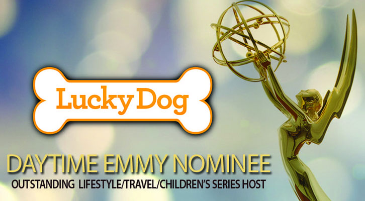 Alumna Earns Emmy for Her Work with Lucky Dog